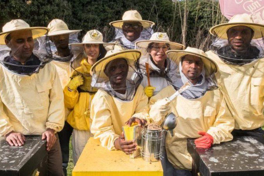 Bee My Job, accoglienza, formazione e lavoro in Piemonte, Emilia Romagna e Calabria