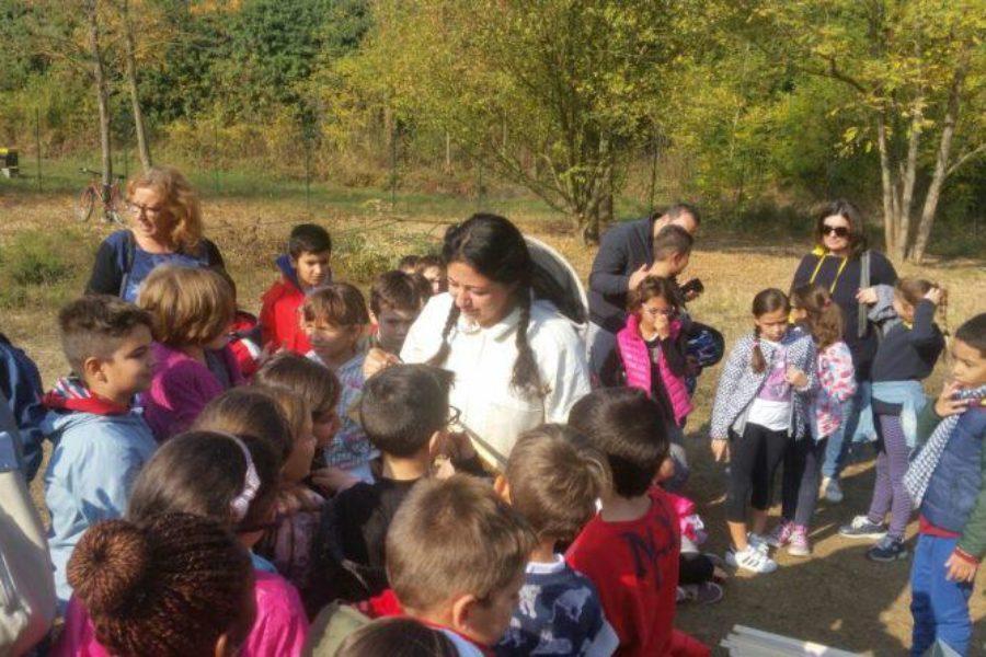 """Apididattica con Bee My Job per inaugurare """"Think Green Amico Albero"""" al Forte Acqui"""