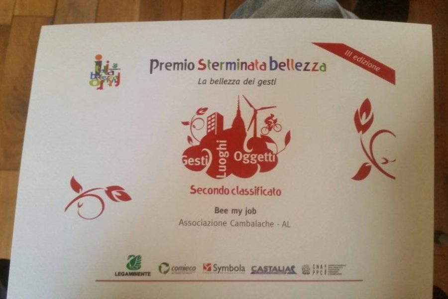 "Bee My Job crea e diffonde ""Sterminata bellezza"""