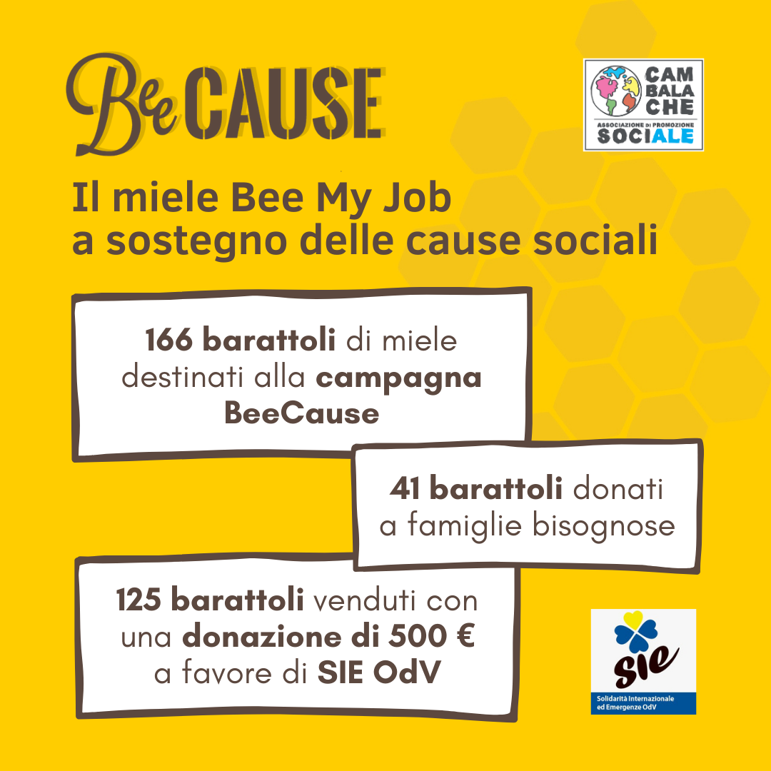 Gli aiuti solidali del miele Bee My Job